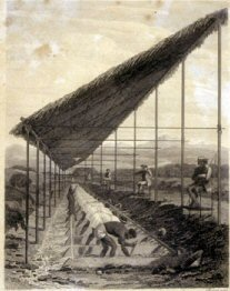 Esclaves employés à l'extraction des diamants, Minas Gerais, Brésil, 1812.