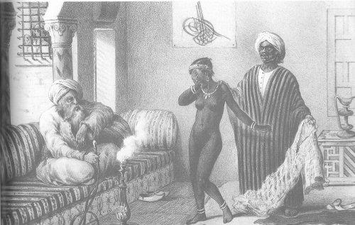 Jeune esclave noire dans un harem arabe
