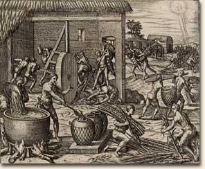Récolte de sucre dans les Caraïbes