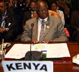 Le président kényan Mwai Kibaki, au sommet de l'Union africaine, le 30 juin 2008 en (Egypte)