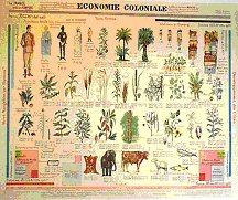Economie coloniale
