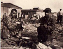 Des noirs dans les camps de concentration nazis