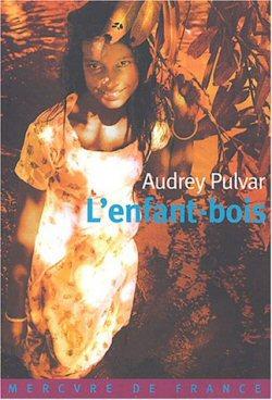 L'enfant-bois, le premier roman d'Audrey Pulvar